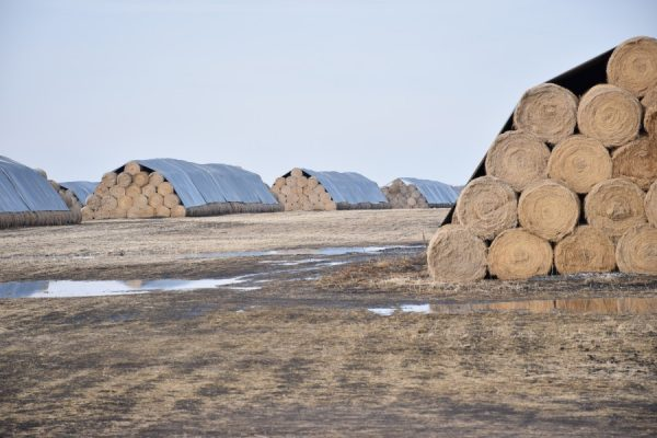 Haystack Covers